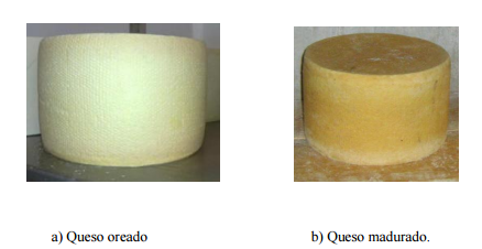 Queso Tepeque