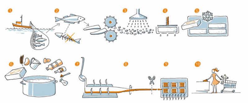 10 etapas proceso surimi