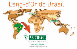 Leng d or do Brasil