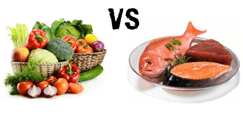 Food News Latam Proteína Animal Vs Proteína Vegetal